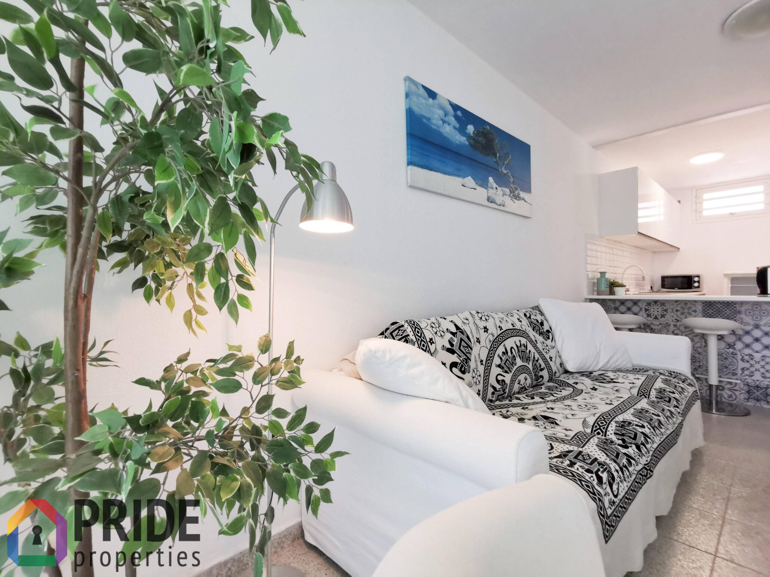 2 Bedroom Apartment Playa del Ingles